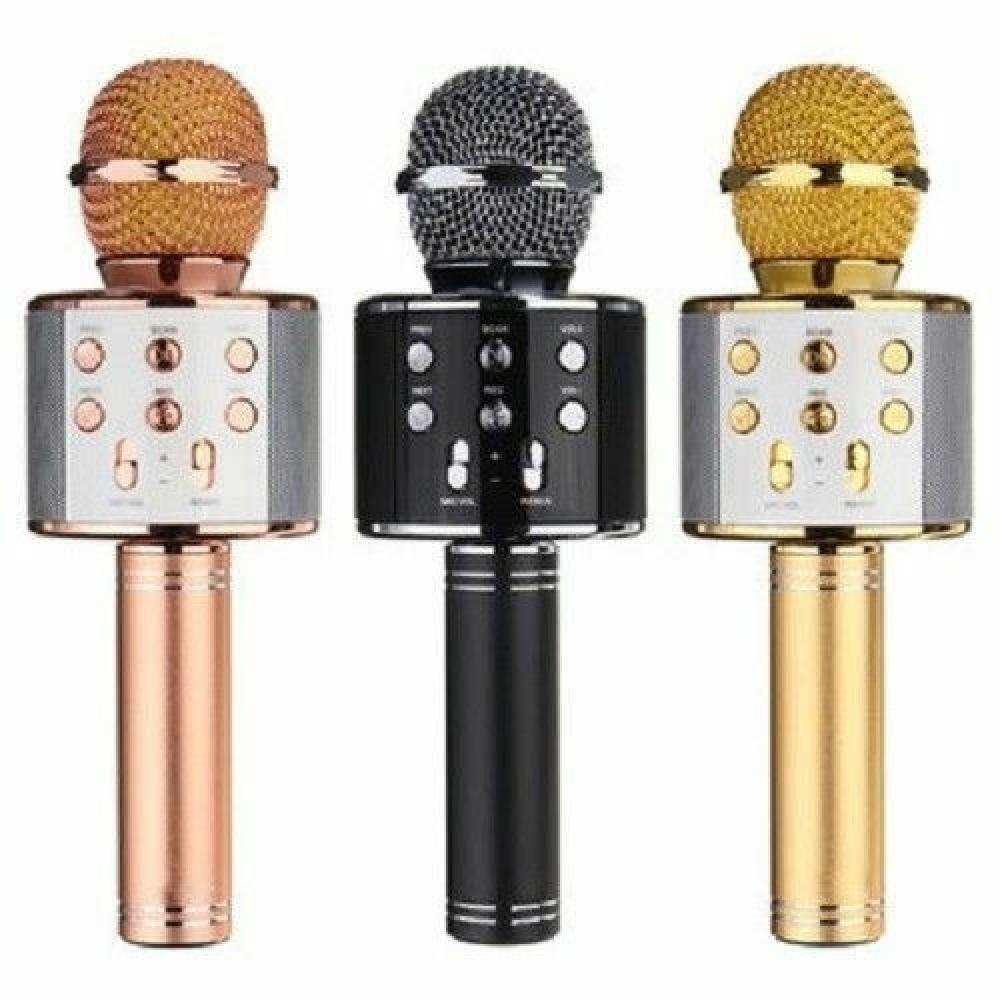 Microfono con cassa altoparlante senza fili bluetooth con eco karaoke usb vec